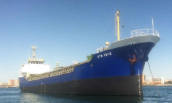Bulk Carriers for Sale | Loggers | NautiSNP